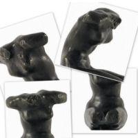 Auguste Rodin - Klein Torso.